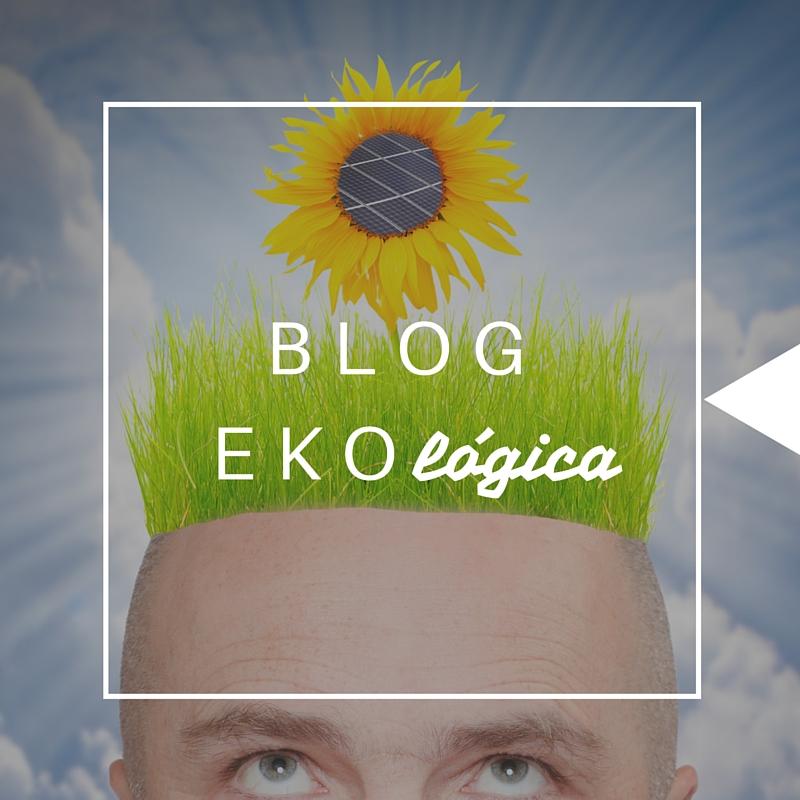 EKoLOGICA(3)370x370
